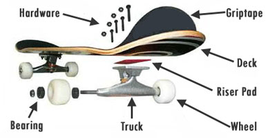 skateboardparts.jpg